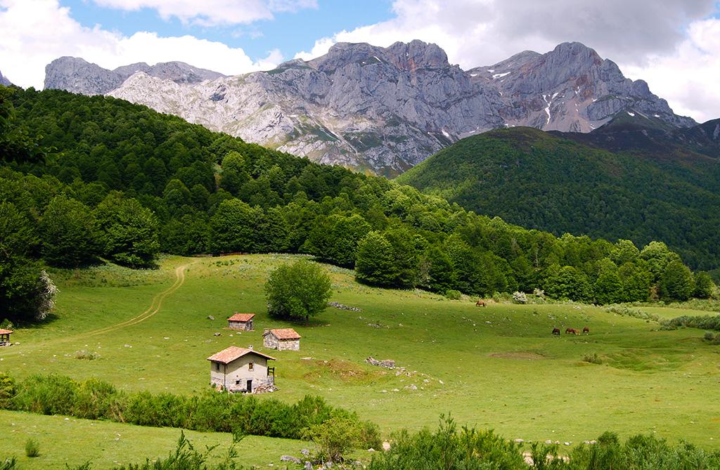 Rutas y Excursiones por Picos de Europa - La Cotorra y Vegabaño