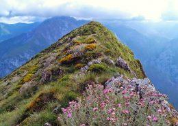 Rutas y Excursiones por Picos de Europa - La Pica Loto