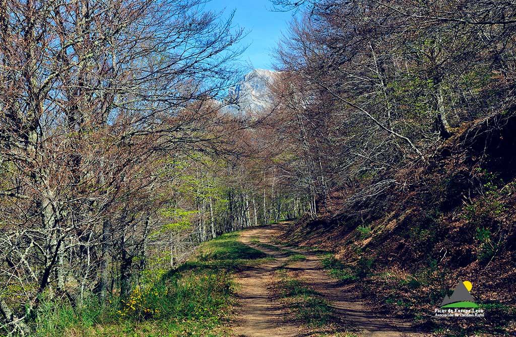 Camino viejo de Panderruedas a Posada de Valdeón